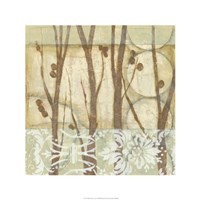 Willow and Lace III Fine Art Print