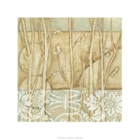 Willow and Lace IV Fine Art Print