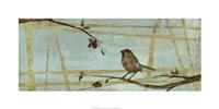Woodland Respite IV Framed Print