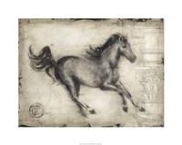 Roman Horse I Framed Print