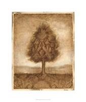 Patterned Maple I Fine Art Print