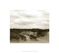 "Ocracoke Dune Study II by Jason Johnson - 18"" x 16"""