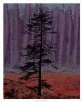 Aurora II Fine Art Print