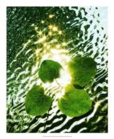 "Floating Light by Leonard Morris - 18"" x 22"", FulcrumGallery.com brand"