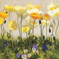 Poppies and Pansies II Fine Art Print