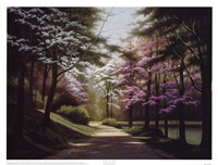 Lakeside Trail Fine Art Print