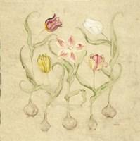 Dancing Bulbs II Fine Art Print
