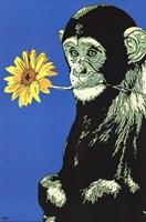 Monkey Flower Wall Poster