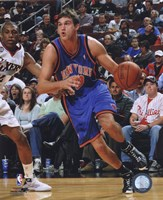 Danilo Gallinari 2008-09 Action Fine Art Print