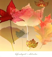 Leaf Counterpoint Fine Art Print