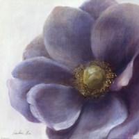 "Contemporary Anemone by Danhui Nai - 18"" x 18"""