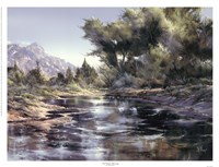 Oak Creek Morning Fine Art Print