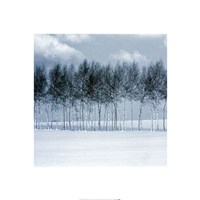 """Zen Winter III - 20"""" x 20"""" - $10.99"""