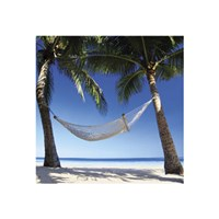 "Paradise - 16"" x 16"" - $9.99"