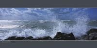 """Ocean Spray, Florida - 39"""" x 20"""""""
