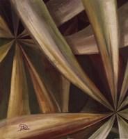 "Abanico II by Patricia Pinto - 24"" x 24"" - $18.99"