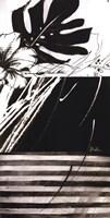 Black & White Leaves II Fine Art Print