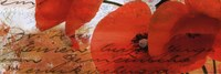 """Poppies Composition III by Patricia Pinto - 36"""" x 12"""""""