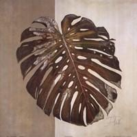 Two Tone Balazo II Fine Art Print
