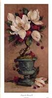 Magnolia Topiary II Framed Print