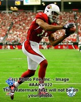 """Larry Fitzgerald 2008 NFC Championship Game Action - 8"""" x 10"""""""