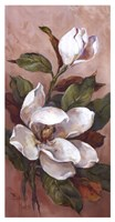 "Magnolia Accents ll by Barbara Mock - 13"" x 25"""