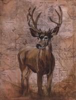 Nature Spirit I Fine Art Print