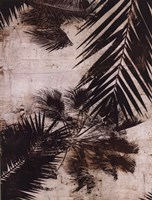 "Palms I by J.B. Hall - 12"" x 16"""