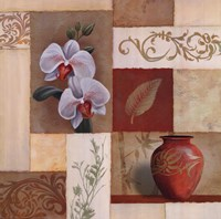 Mandarin Collage II Fine Art Print