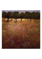"Orchard by Ken Hildrew - 20"" x 28"""