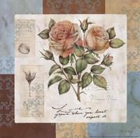 Summer Roses Fine Art Print
