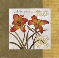 Garden Inspiration III Fine Art Print