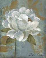 Peony Tile I by Silvia Vassileva - various sizes