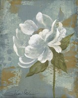 Peony Tile II by Silvia Vassileva - various sizes