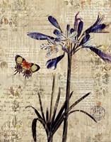 Botanical on Wood II Fine Art Print
