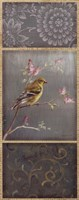 Female Goldfinch Fine Art Print