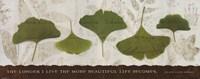 "Beautiful Life by Wild Apple Studio - 20"" x 8"""