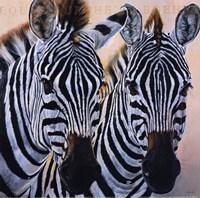 Zebres de Gol Fine Art Print