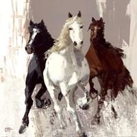 Les chevaux I Fine Art Print