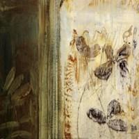 "Organic Study IV by Simon Addyman - 18"" x 18"""
