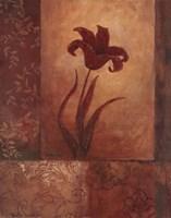 Lily Silhouette Fine Art Print