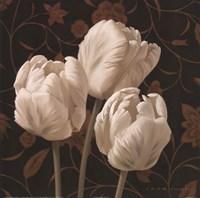 Flores Elegante II Framed Print