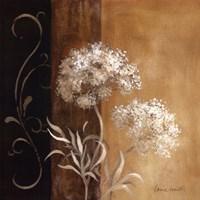 "Delicate Beauty I by Lanie Loreth - 24"" x 24"""