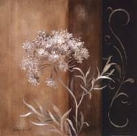 """Delicate Beauty II by Lanie Loreth - 24"""" x 24"""""""