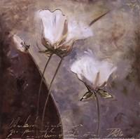 """Magic Garden IV by Patricia Pinto - 12"""" x 12"""""""