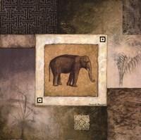 """24"""" x 24"""" Elephant Pictures"""