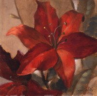 Crimson Fleurish II Framed Print