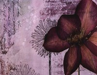 Pressed Flowers I Fine Art Print