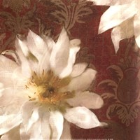 Royal Clematis I Fine Art Print