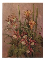 """Exotics Collection l by Barbara Mock - 20"""" x 26"""""""